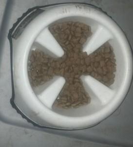 Trey's Slow Feed Bowl