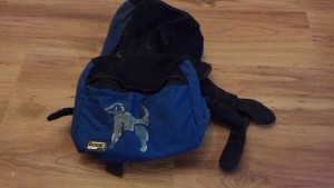 Dickens Closet Backpack