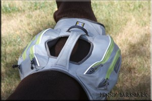 RuffWear_Singletrak_Top_View